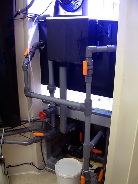 mike plumbing - Austin - Mike's 450g reef