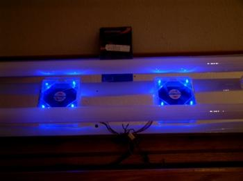 Late night Moonlight effect - DIY project  sc 1 st  Melevu0027s Reef & Melevu0027s Reef - Moonlighting