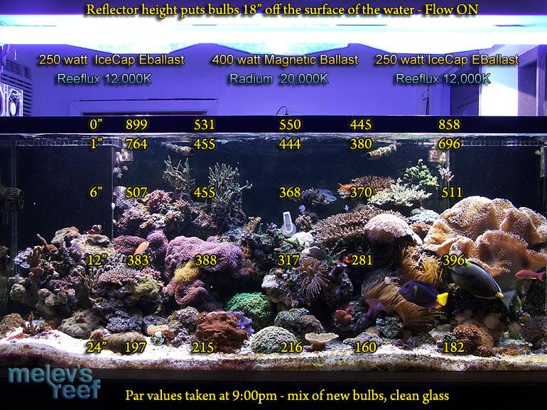 Par Measuring Lighting Intensity With A Meter Melev S Reef