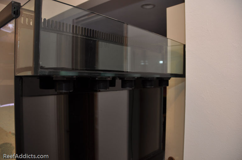 reef addicts plumbing primer how to purchase install bulkheads