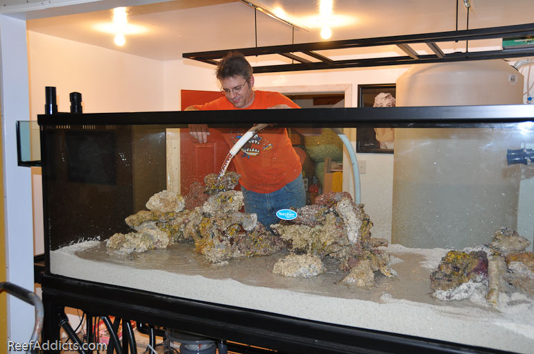 how to clean algae off aquarium rocks with hot water